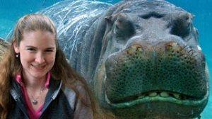 smiling_hippo_smiling_lassie
