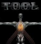 Tool-salival-album Ya wan-ned to know