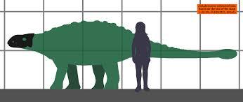 File  Ankylosaurus estimated size