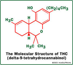THC is the main psychoactive active ingredient in Cannabis Sativa. THC or tetrahydrocannibinol is what gets you high, the higher amount of THC your bud has