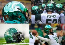 Michigan State's very shiny helmets with a white and green jersey.