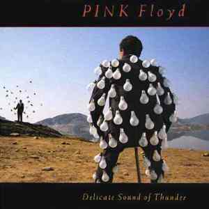 Delicate Sound of Thunder A live album. A guy wears light bulbs and someone else is surrounded by... well, I can't tell. This is typical Storm Thorgerson