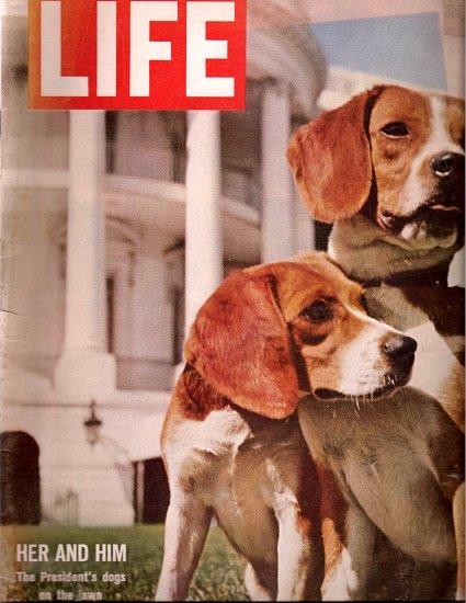 LIFE Magazine - June 19, 1964 - President Johnson's Beagle Dogs on cover