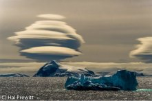 ice clouds million year old icebergs